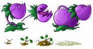 Chomper-and-potato-concepts--590x316