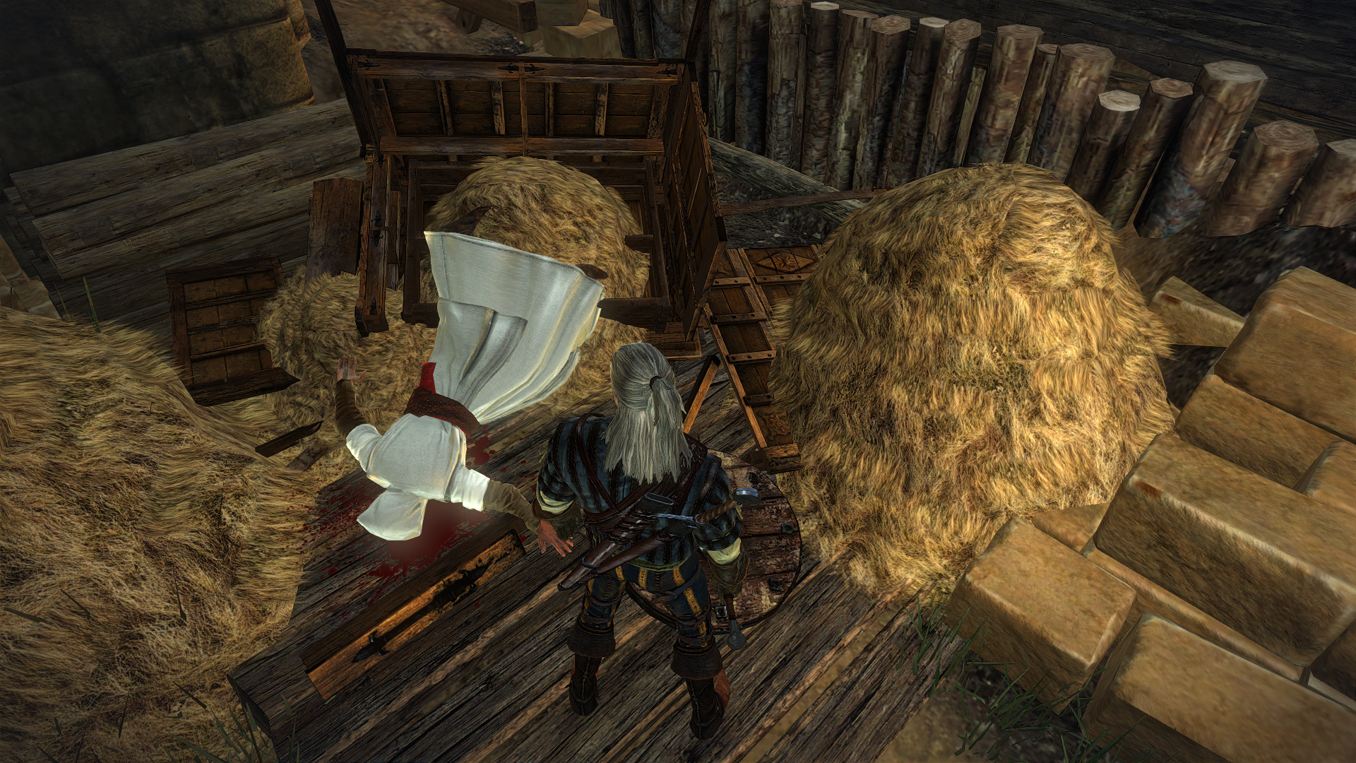 Witcher2_Assassin.png