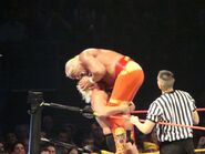 Hulkamania Night 1 12