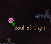 SoulLight