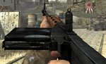 FG42 WaW