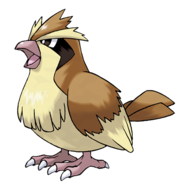 016Pidgey