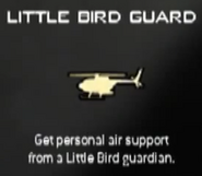 Little Bird Guard MW3 CreateAClass