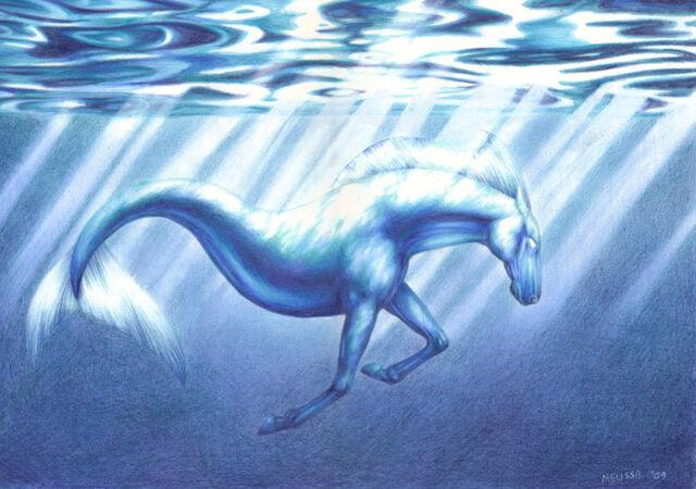 Mythical water horses - photo#14