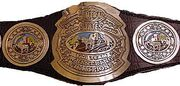 NWA Central States Tag Team Champion (old)