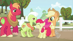 Apple Family MLP