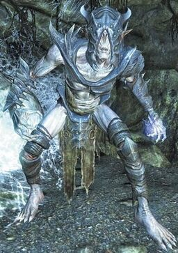 Falmer Shadowmaster