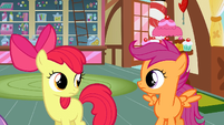 Scootaloo &amp; Apple Bloom she serious S2E17