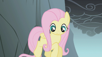 Fluttershy looks down while jumping a gap S1E07