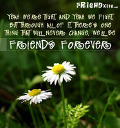 Friendsforevercard4