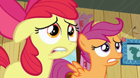 Scootaloo &amp; Apple Bloom freak out S2E17