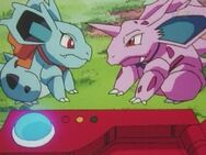 Nidorina and Nidorino