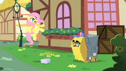 Fluttershy startled by Pinkie Pie in hay bale costume S1E25