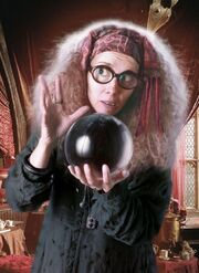 Divination professor