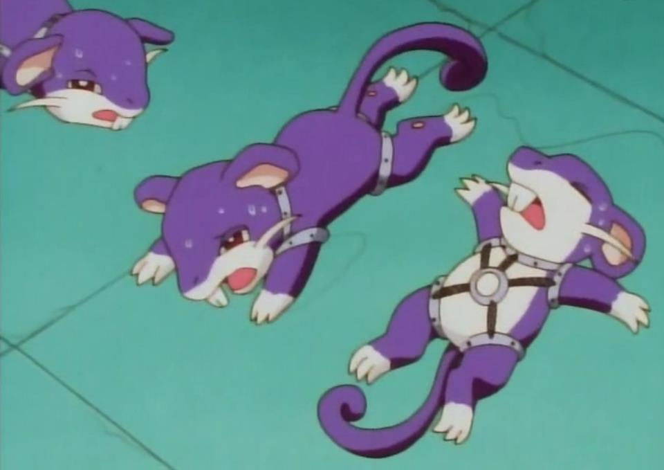 http://images2.wikia.nocookie.net/__cb20120219034237/pokemon/images/a/a1/A.J.%27s_Rattata%3B_Rest.jpg