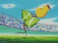 Jeanette&#39;s Bellsprout
