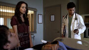 PLL217 (9)