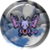 142Aerodactyl2