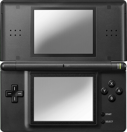 Nintendo DS Lite Console