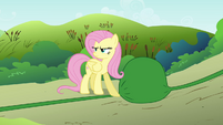 Fluttershy blocking water S2E19