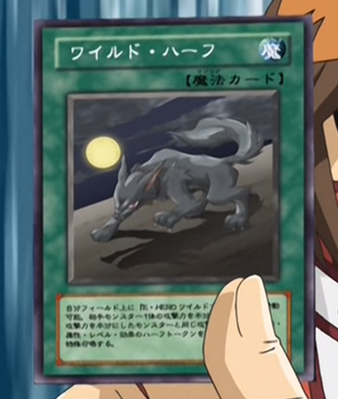 http://images2.wikia.nocookie.net/__cb20120305005228/yugioh/images/1/16/WildHalf-JP-Anime-GX.png