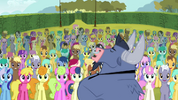 Iron Will and background ponies