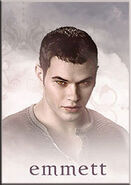 New moon emmett