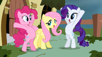 Rarity &amp; Pinkie Pie around Fluttershy S2E19