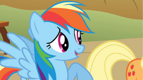 Rainbow Dash talks to Applejack S1E13