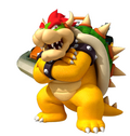 Bowser mkcr