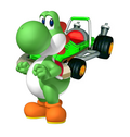 Yoshi mkcr