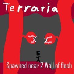 Terraria Spawned near 2 wall of flesh
