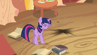 Future Twilight disappeared S2E20