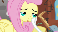 Angel slaps Fluttershy S2E19