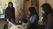 PLL201 (12)