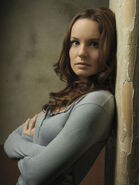 Sarah wayne callies prison break