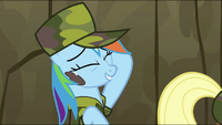 Rainbow Dash &quot;One tough stain for one lame dragon...&quot; S2E21