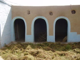 Drying Crop in rural Punjabi home