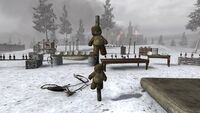 Teddy Bears Training CoD2