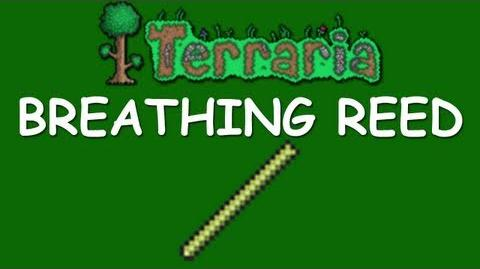 Terraria - Breathing Reed