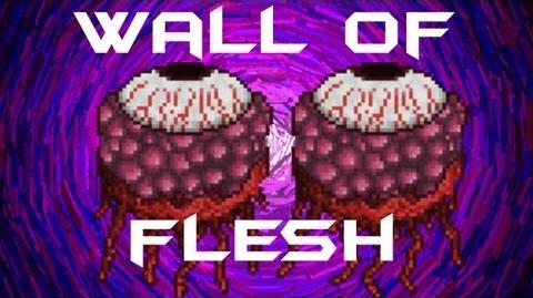335px-Terraria_-_Wall_of_Flesh_BOSS_Figh