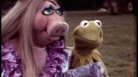 1979 Muppet Movie Camera Test - Part Two