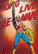 NA He-Man minicomics