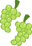 PonyMaker Grapes