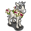 Hibiscus Unicorn Foal-icon