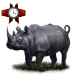 Item blackrhino 01