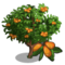 Loquat Tree-icon