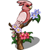 Pink Parrot-icon