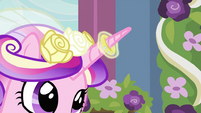 Ring on Cadance's horn S2E26
