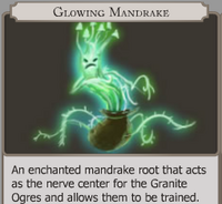 Glowing Mandrake